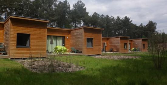 Construction de 400 cottages - Center parcs (86)